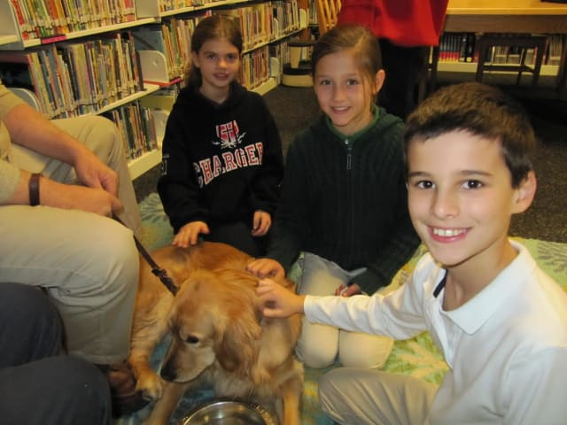 Maggie the comfort dog interacts with children during a visit to the Chapel School in Bronxville.